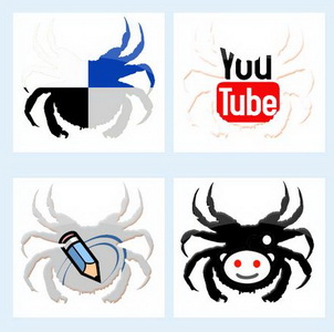 Spider social icons