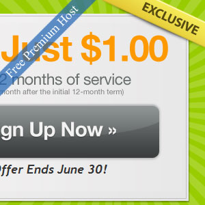 1 dollar 1-year Premium Hosting Package