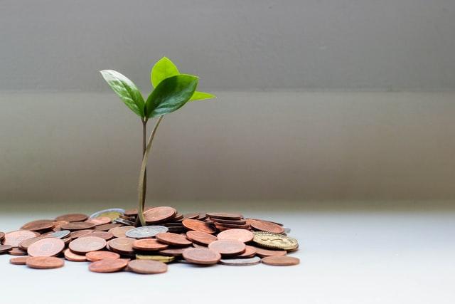 receiving money from blogging